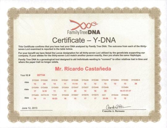 Y DNA Ricardo Castañeda