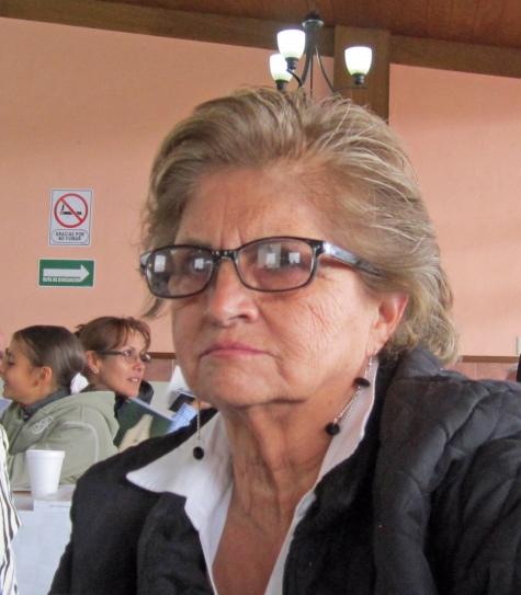 Laura Luna, asamblea Castañeda 2012